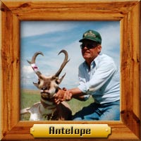 antelope hunting photo galleries