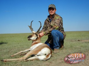 antelope064