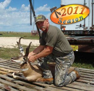 antelope104
