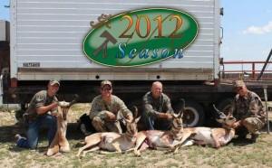 antelope115