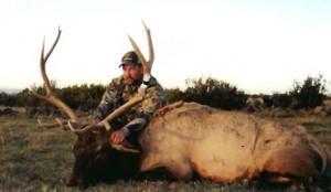 elk-archery010