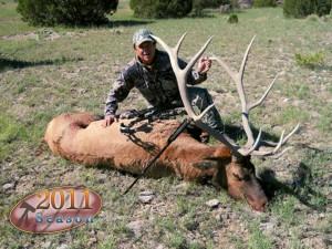 elk-archery014