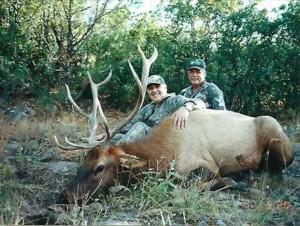 elk-archery023