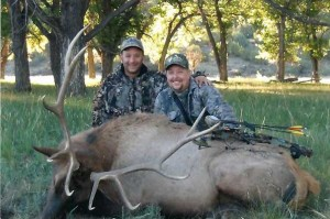 elk-archery024