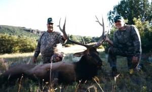 elk-archery041