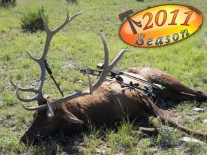 elk-archery049