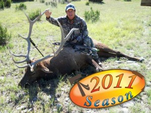 elk-archery050