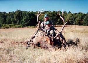 elk-archery053