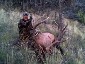 elk-archery056