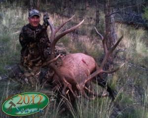 elk-archery060