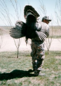 turkey002