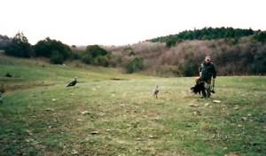 turkey017